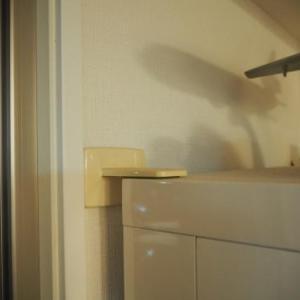 防災の日に。我が家の家具転倒防止を確認する!!