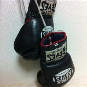 ボクシングの虫