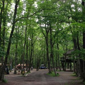 梅雨のバースディキャンプ in スウィートグラス 2014-6-21~