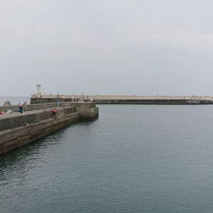伊東港 赤灯堤防で海釣りを楽しむ