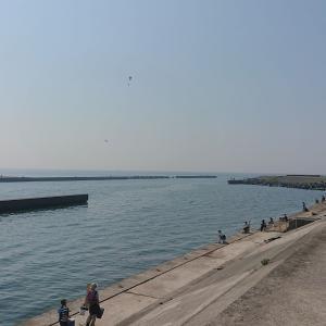 相模川河口で海釣りを楽しむ ハゼとコハダか新子(シンコ)が釣れた