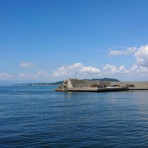 平塚新港(ひらつかタマ三郎漁港)で海釣りを楽しむ カワハギ・オジサン・キビレが釣れた