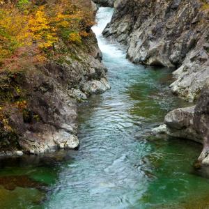 秋の魚沼 紅葉巡り 6