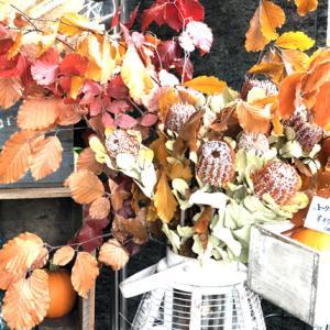 10月は戌の月! 今月は余計なものを自分からそぎ落とす!