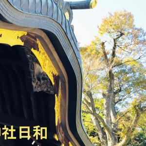 『神社日和』神様に歓迎されるサインのこと!