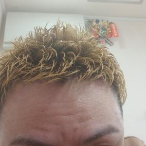 抜いたら白髪は増えちゃうの?