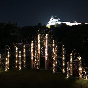 和歌山城西ノ丸からの天守閣
