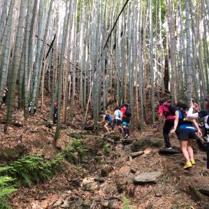 祝 令和!熊野古道マラニック