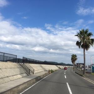 今夜は和歌山城ナイトランニングの日で〜す♪