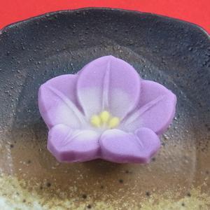 桔梗(練り切り)  秋の上生菓子