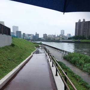 雨の日、久しぶりに1万歩以上あるいたんですがね