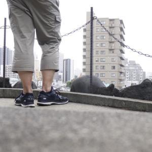 江戸七富士を1日で全部巡ったら2万歩超え