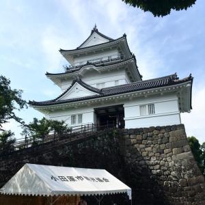 小田原城から歩く