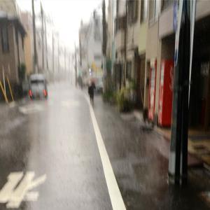 雨の日の散歩とサイゼリヤ