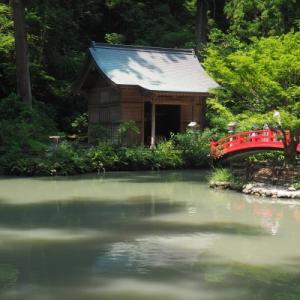 20190728 初夏の小國神社と天竜浜名湖鉄道 1
