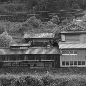 20200430 東海道本線 菊川・金谷間の風景 3(完)
