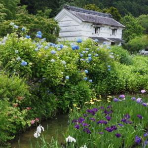 20200607 梅雨入り前に加茂荘花鳥園 1
