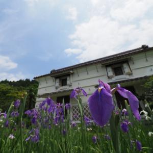 20200607 梅雨入り前に加茂荘花鳥園 7