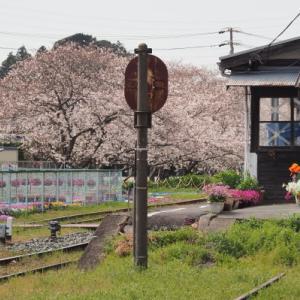 20210327 春の天竜浜名湖鉄道 1