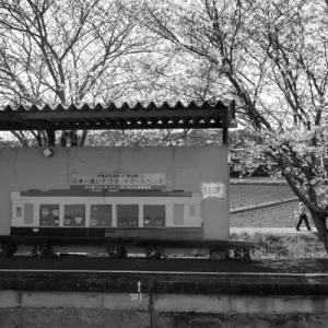 20210327 春の天竜浜名湖鉄道 5