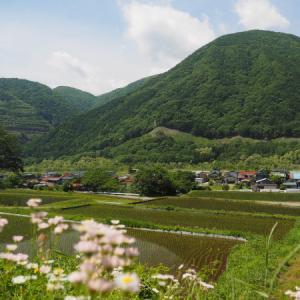 松本遠征ついでに小海線と信州花フェスタ撮影 1