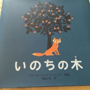 絵本「いのちの木」