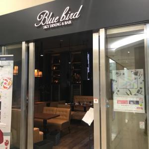 BlueBird(梅田)