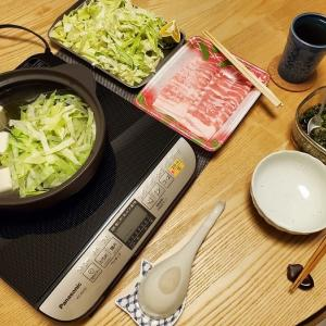 家ごはん:豚肉と細切り野菜の元気鍋と万能葱だれ
