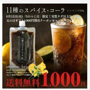 【本日限定】実質無料?11種類のスパイスコーラ!