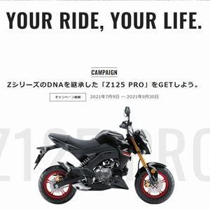 【バイクの懸賞165台目】:カワサキ Z125 PROが当たる!