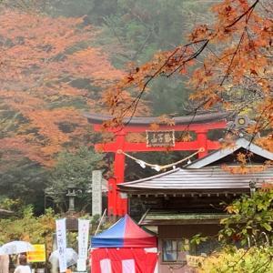 金運神社への旅  2日目   フクロウの神社☆