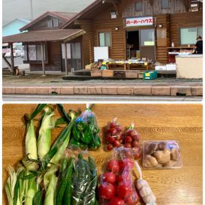 秩父の野菜&庭のハーブでvegan料理、調味料0のラタトゥイユ☆
