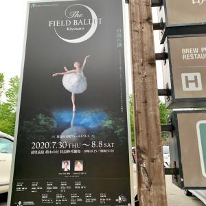 清里フィールドバレエ  その2  萌木の村&夜の野外バレエ
