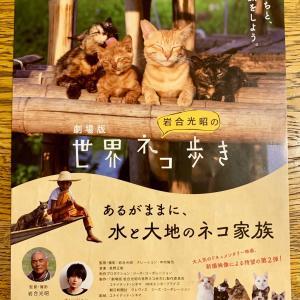 『世界ネコ歩き』を観て、東京ヲトギバナシ買って、富士神社参拝…
