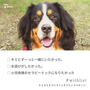 バジダ、札幌駅東コンコースに出現中!!