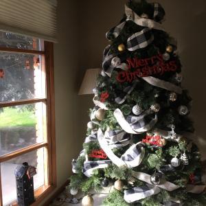 クリスマスツリー and 映画