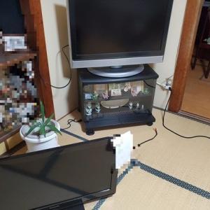 介護帰省中に液晶テレビが故障!便利リモコンの購入とその顛末