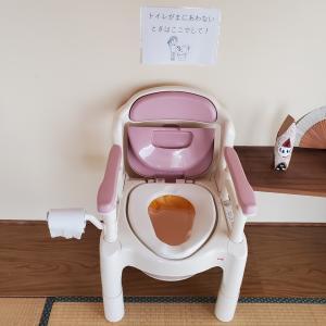 認知症の母の寝室にとうとうポータブルトイレを設置した