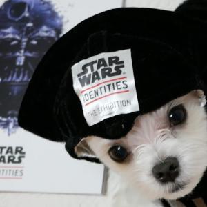 ダースヴェーダな俺っち Star Wars Identities 展
