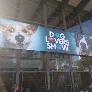 Dog lovers show 2019 @ Olympic park