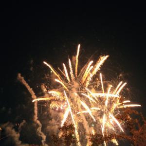 全国の夜空を彩る花火