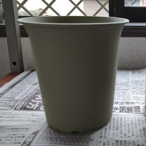 プラスチック鉢をリメイクして