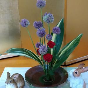 ギガンジュームの生花