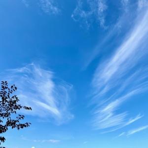 青空に浮かぶ雲が・・