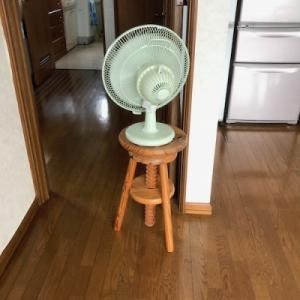 正しい(笑)扇風機の使い方