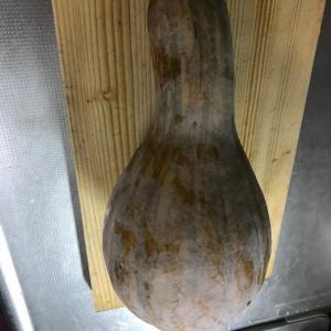 ピーナツ南瓜