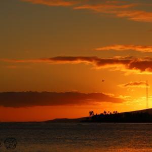 【ハワイフォトツアー】アラモアナビーチでサンセット撮影