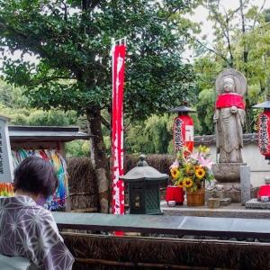 鈴虫寺と地蔵院と思考整理でスッキリ!