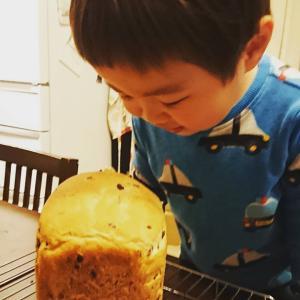 パンを焼くのにオススメの粉 江別製粉