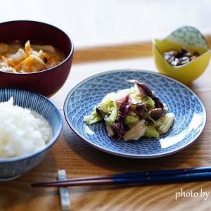 ☆【買ってよかった】有田焼5寸取り皿。盛り付け写真で比較してみました。
